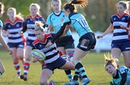 Video: Highlights Bristol Ladies 34-10 Worcester Valkyries