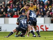 GALLERY: Sale Sharks 23-24 Bristol Rugby