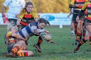 Bristol Ladies To Play At Ashton Gate