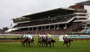Cheltenham Festival: Phil's day one tips