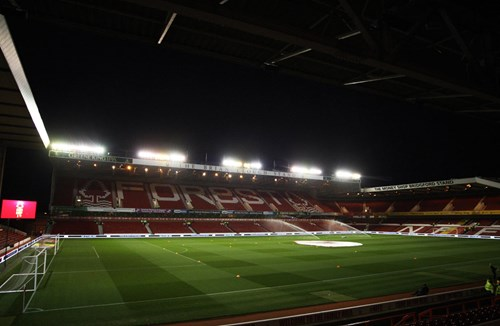Forest tickets set to go on sale