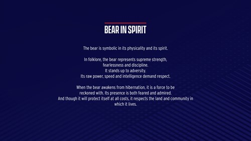 Bristol Bears - all you need to know