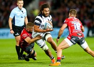 Preview: Bristol Bears vs Harlequins
