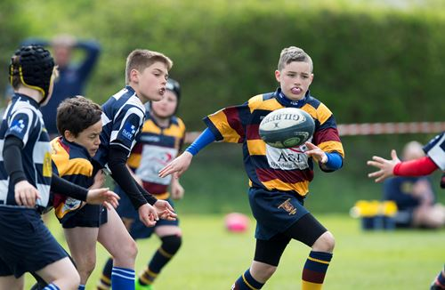 Community Foundation to host Land Rover Premiership Cup