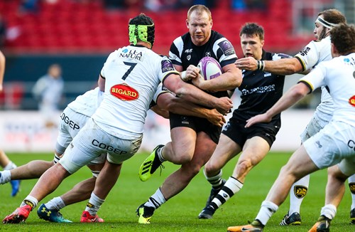 Preview: Bristol Bears vs Enisei-STM