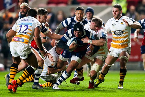 Gallery: Bristol Bears 22-29 Wasps Rugby