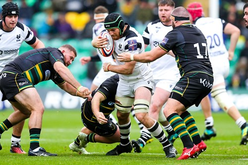 Team news: Northampton Saints vs Bristol Bears