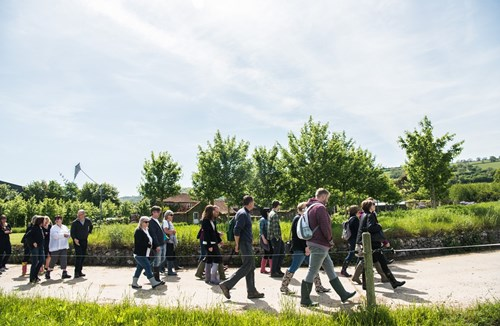 Visit Yeo Valley this Spring