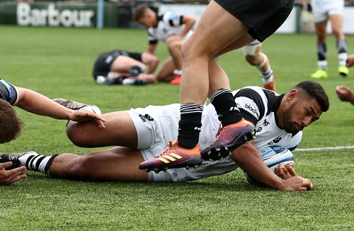 Report: Newcastle Falcons 12-19 Bristol Bears