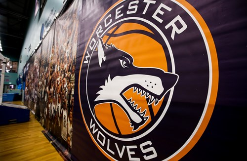 Flyers to face Worcester Wolves in pre-season