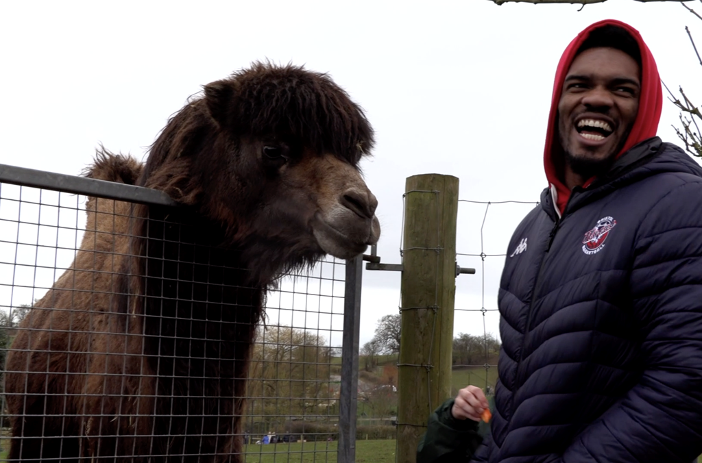 Bristol Flyers visit Noah's Arc Zoo Farm