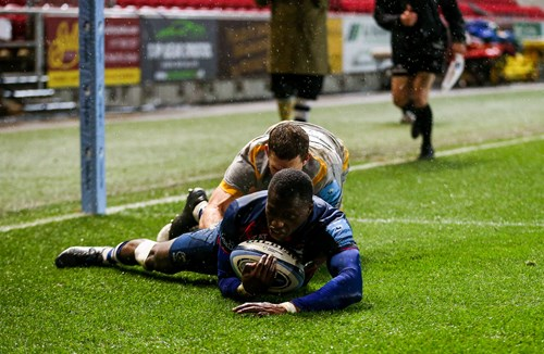 Report: Bristol Bears 37-20 Wasps Rugby