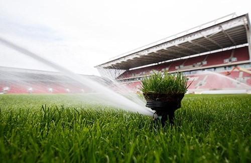 Vacancy: Groundsman/woman
