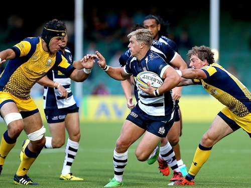 GALLERY: Worcester Development XV vs Bristol Rugby